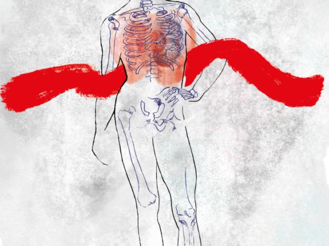Science Book Cover Printed Karin Huizer doctor Nederland Dutch Engels English illustrator illustration illustratie blood medical skeleton lung heart fractal watercolor