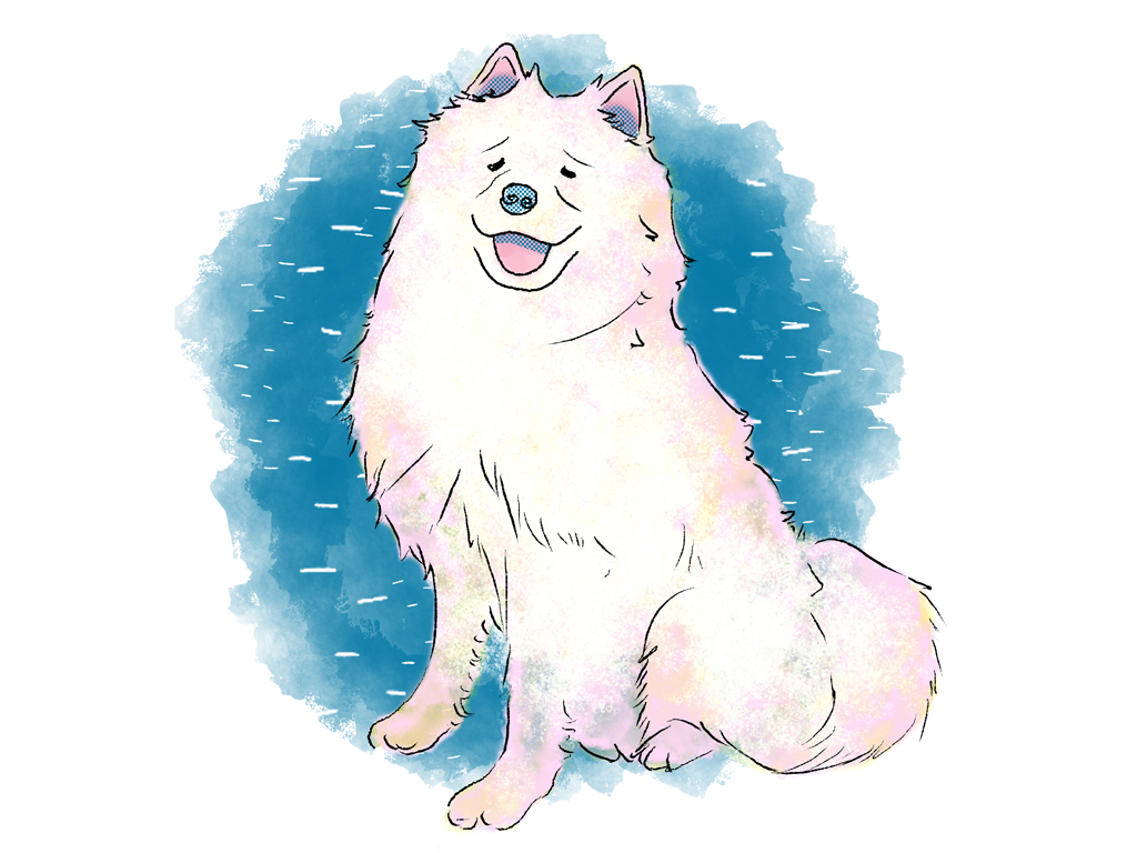 white fluffy husky cute aumenstudios aumen dog dogs pup puppy doggo abstract popular kinder kinderboek kinderboeken tekenaar illustratie engels nederland